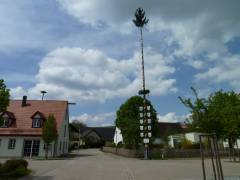 Maibaum in Kurzenaltheim